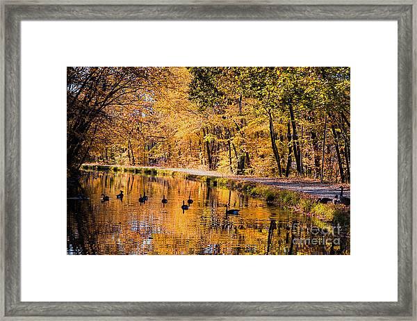 A Golden Afternoon Framed Print