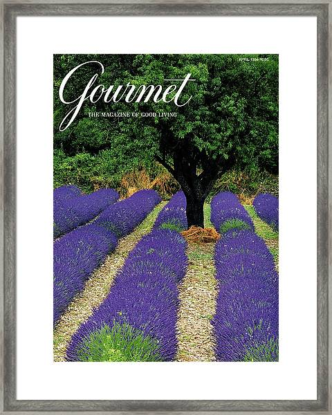 A Gourmet Cover Of A Lavender Field Framed Print