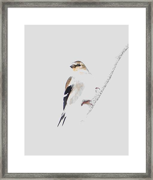 A Gray Winter's Day-2 Framed Print
