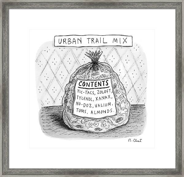 Urban Trail Mix Framed Print