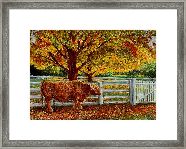 A Shaker Fall Framed Print