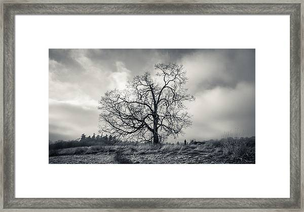 A Little Perspective Framed Print