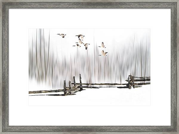 A Little Winter Magic Framed Print
