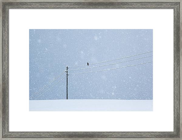 A Long Day In Winter Framed Print