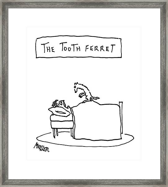 A Man Lies In Bed With A Ferret On Top Framed Print
