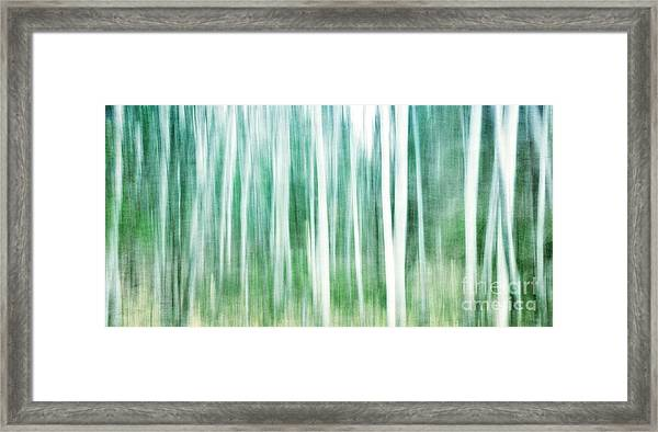 A Matter Of Blues Framed Print