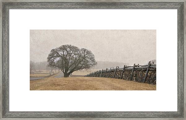 A Misty Morning In Horse Country Framed Print