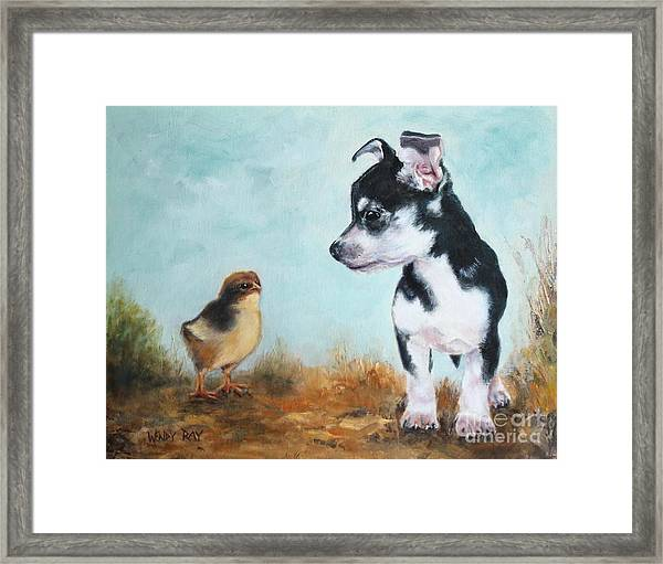 A New Acquaintance Framed Print