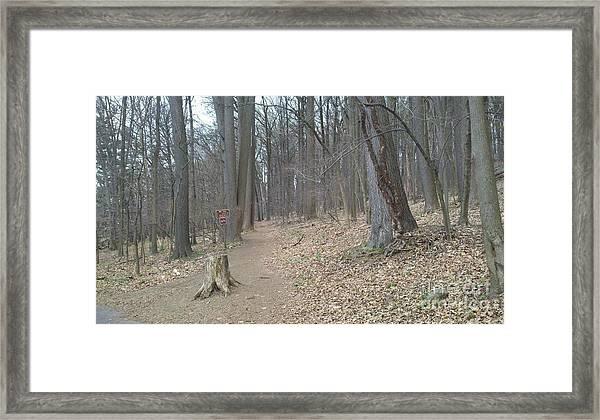 A Path To Follow Framed Print