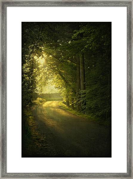 A Path To The Light Framed Print