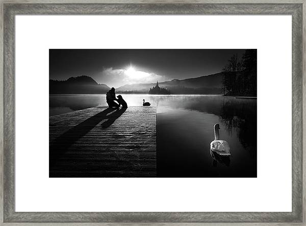 A Peaceful Morning At The Lake Framed Print