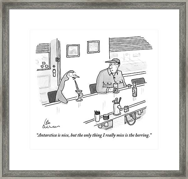 A Penguin Drinking A Martini Sits At A Bar Framed Print