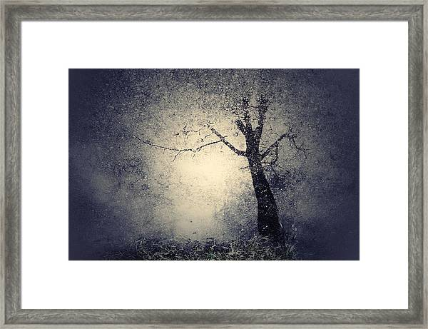 A Place We Once Longed For Framed Print by Joseph Mazzucco