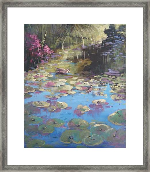 A Pond Reflection Framed Print