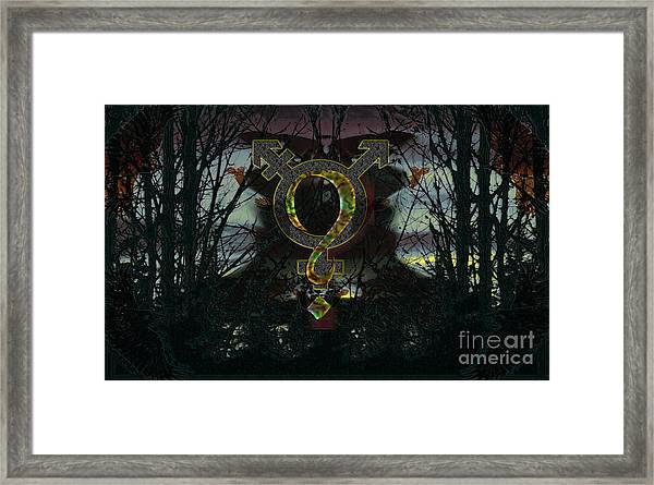 A Quest Framed Print