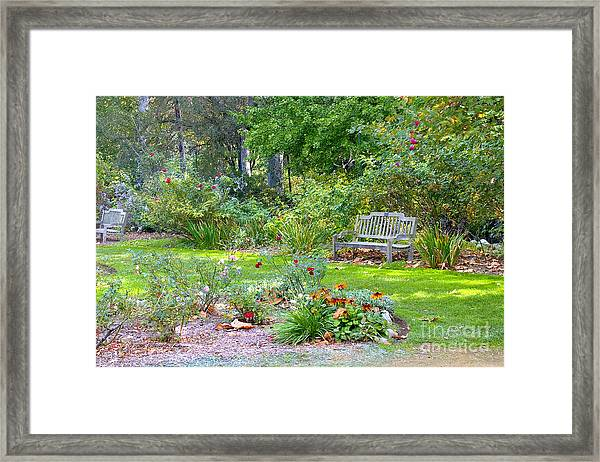 A Quiet Day In The Park Framed Print