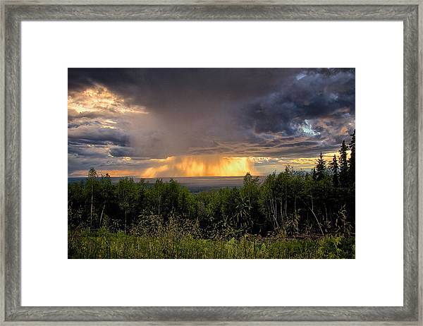 A Rainy Night In Minto  Framed Print