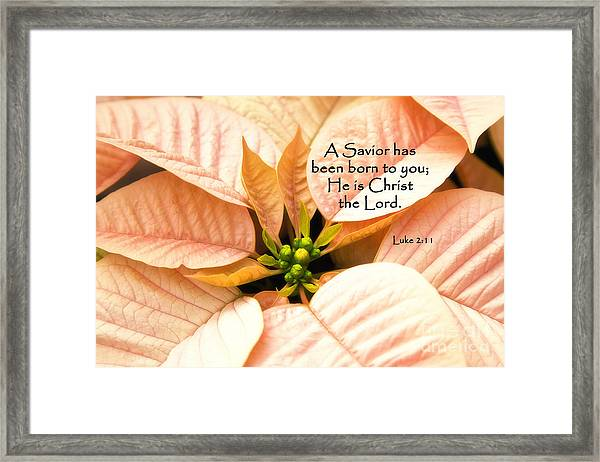 A Savior Has Been Born To You He Is Christ The Lord Framed Print