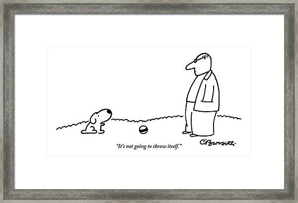 A Small Dog Sits A Short Distance Away Framed Print