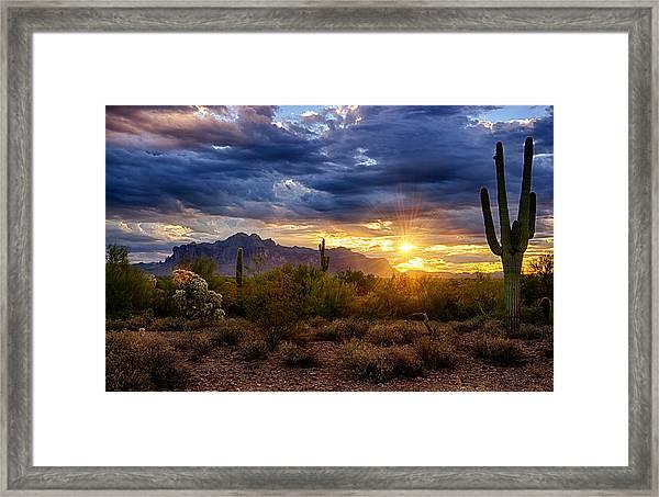 A Sonoran Desert Sunrise Framed Print