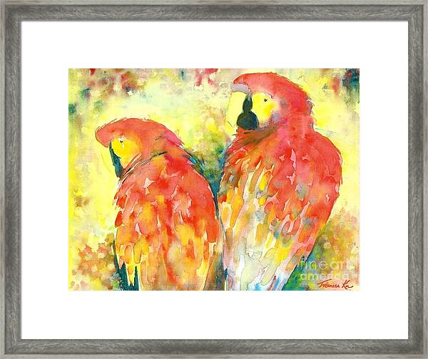 A Splash Of Crimson Framed Print