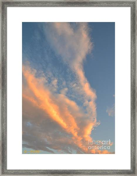 A Splash Of Peach Framed Print