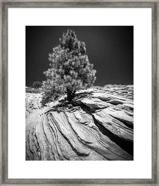 A Steadfast Spirit Framed Print