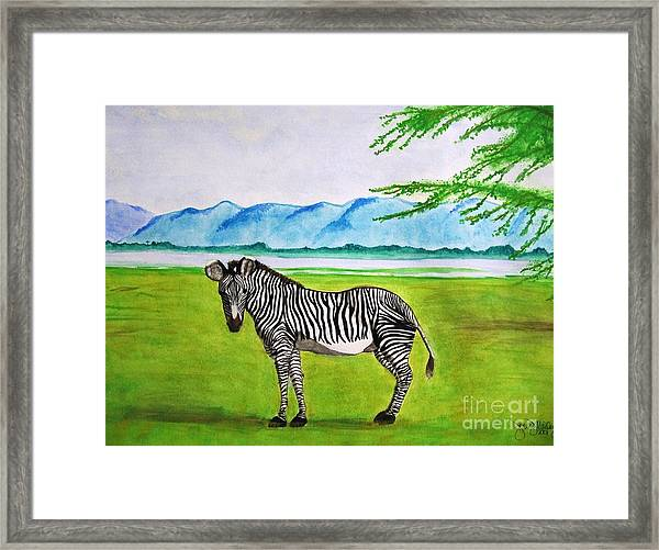A Striped Chap Framed Print