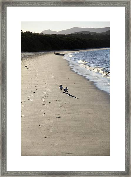 Framed Print featuring the photograph A Stroll Along The Beach by Debbie Cundy