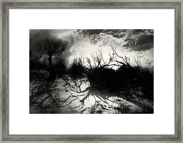 A Symphony Of Light And Shadows Framed Print