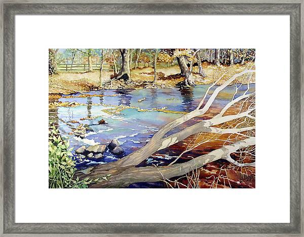 A Tree Falls Framed Print
