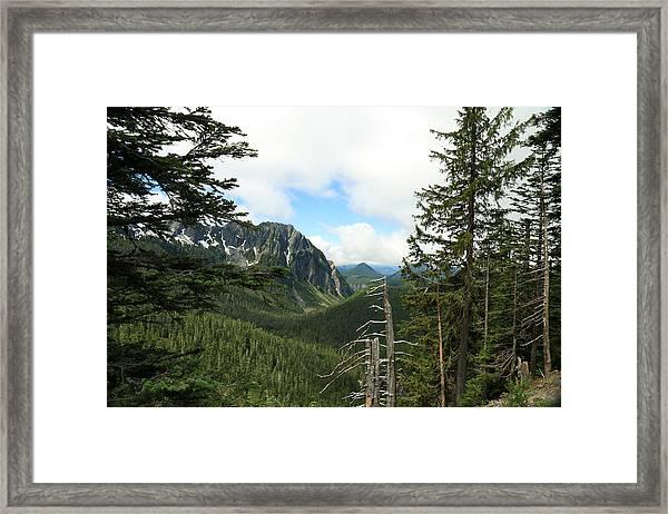 A Vista - Mt. Rainier National Park Framed Print
