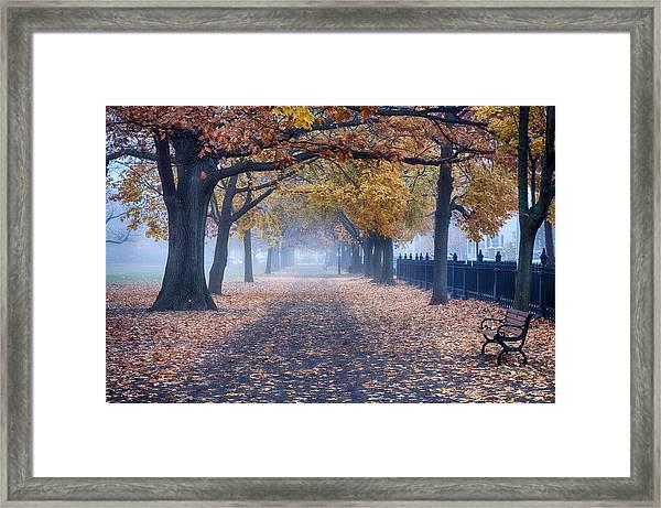 A Walk In Salem Fog Framed Print