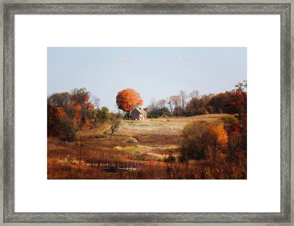 A Walk In The Meadow Framed Print