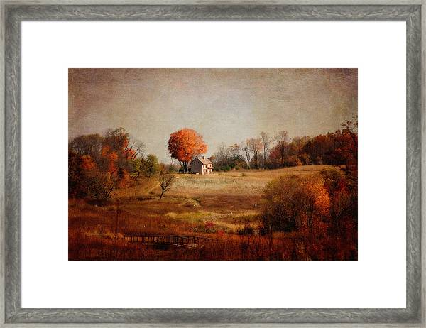 A Walk In The Meadow With Texture Framed Print