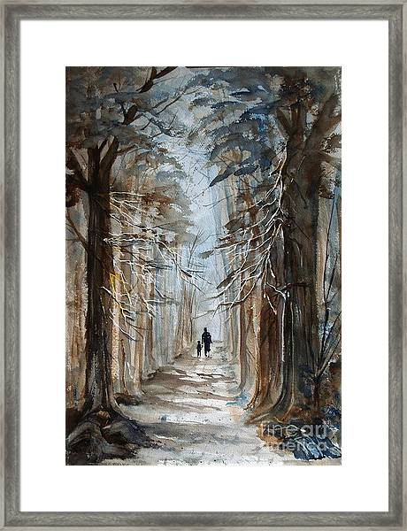 A Walk In The Woods Framed Print