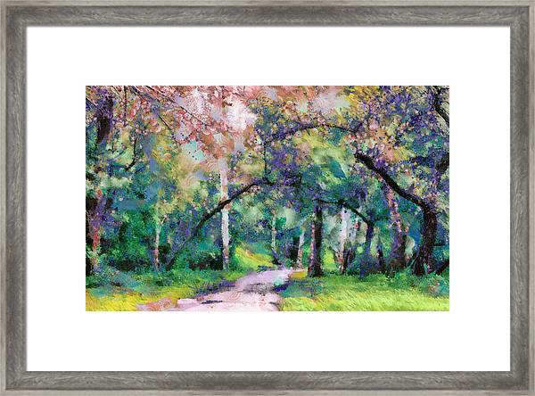 Framed Print featuring the mixed media A Walk Inside The Rainbow Forest by Priya Ghose