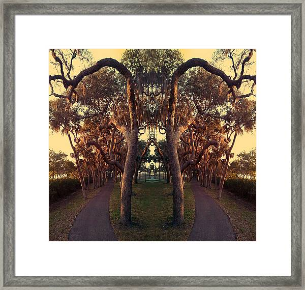 A Walk On The Not So Wild Side Framed Print
