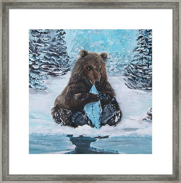 A Young Brown Bear Framed Print