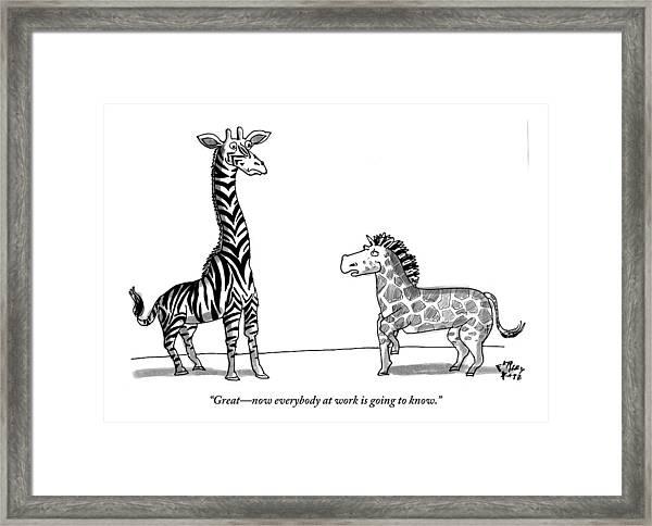 A Zebra With Giraffe Spots Is Seen Speaking Framed Print