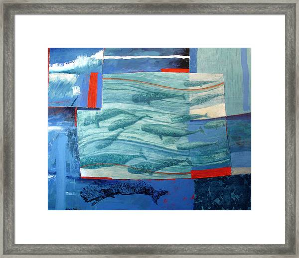 About 120 Western Grey Whales Wc On Paper Framed Print