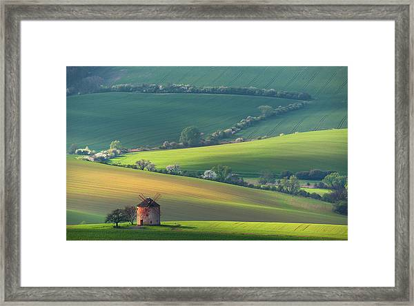 About Forms & Line's Framed Print by Vlad Sokolovsky