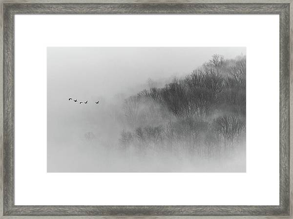 Above Mist Framed Print