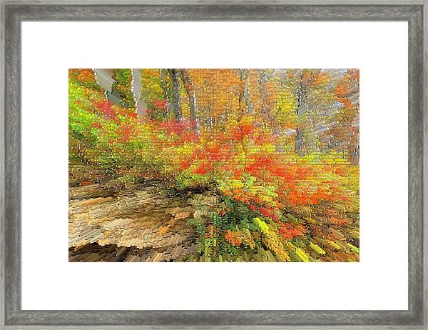 Abstract Autumn  Framed Print