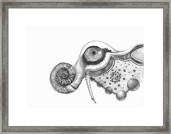 Abstract Drawing #2 - Tigerphant Framed Print