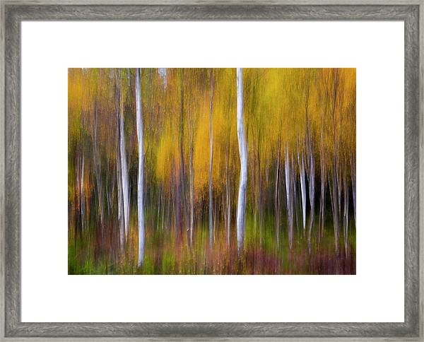 Abstract Fall Framed Print