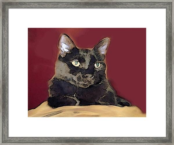 Abstract Feline Framed Print
