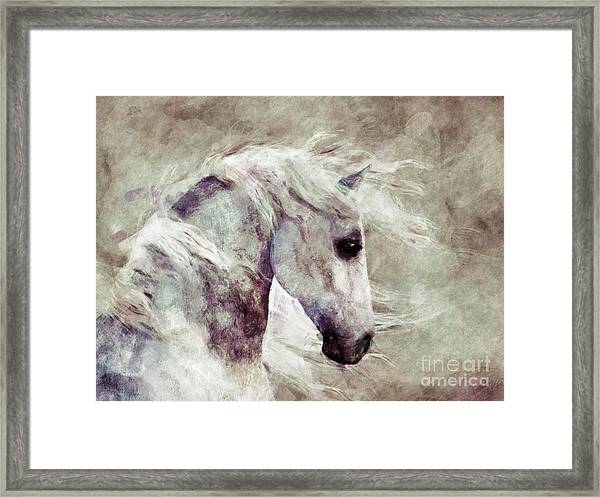 Abstract Horse Portrait Framed Print