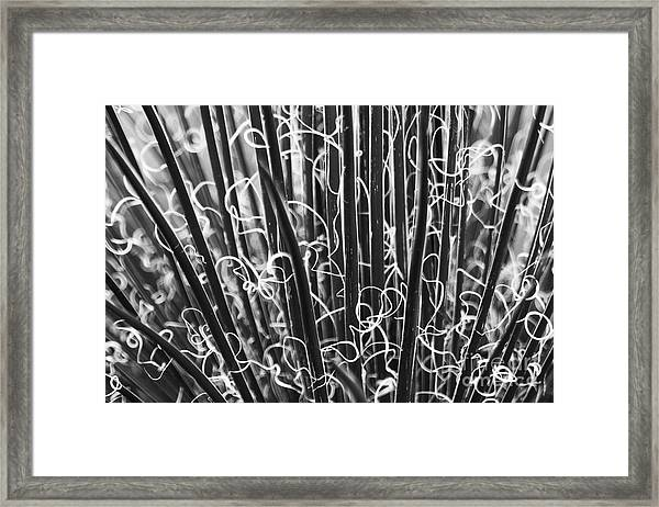 Abstract In Black And White Framed Print