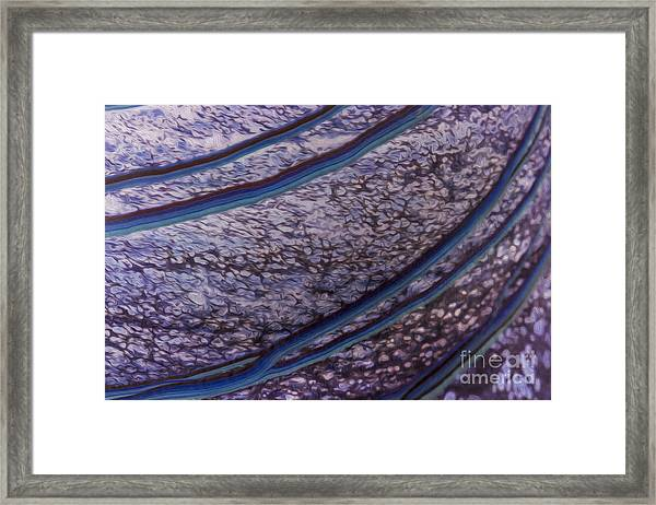 Abstract Lines. Framed Print